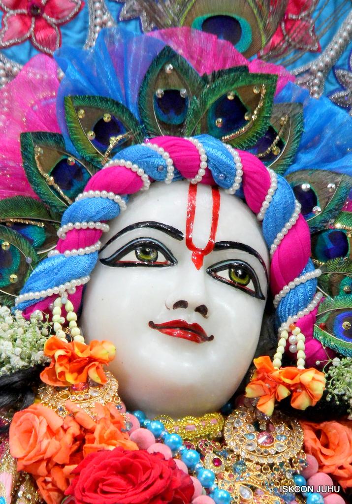 ISKCON Juhu Sringar Deity Darshan on 29th Dec 2016  (40)
