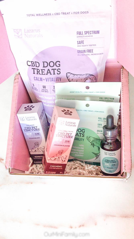Lazarus Naturals CBD Dog Treats in a box
