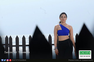 Tamanna Hot In Kaththi Sandai : Vishal Tamanna HD Photos Images Pics Pictures Stills
