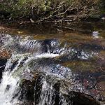Piles Creek (179325)