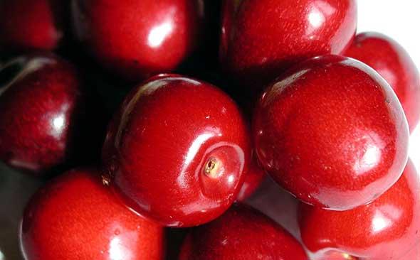 Cherry friut