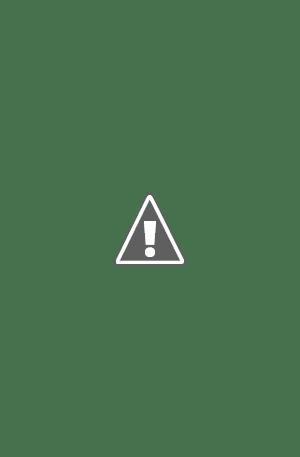 Plantilla para página de periódico o revista, formato InDesign, con entrevista a toda página