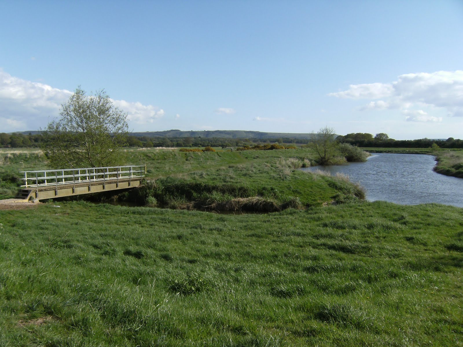 1005030028 River Arun at Pulborough Brooks