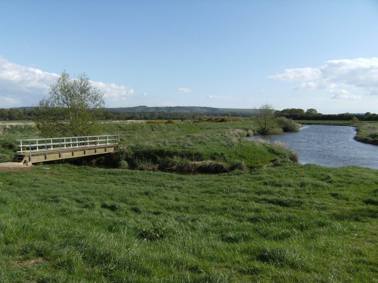 1005030028 River Arun at Pulborough Brooks