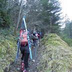 Depart pour 400m de petit sentier en forêt agréable. Le senteir démarre quelques kilomètres après le village de Tramazeïgue en direction du vallon de Rioumajou