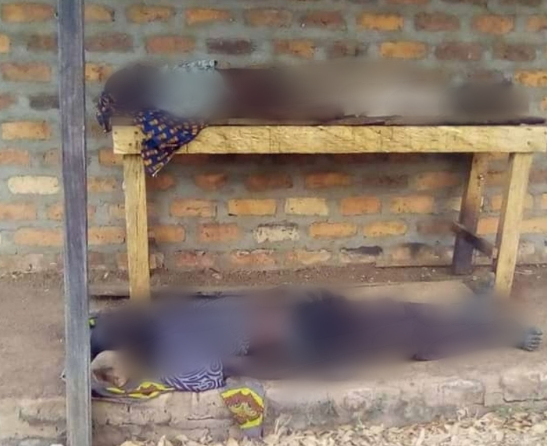 Two brothers slump and die within seconds of each other while fighting over their late father's land in Benue