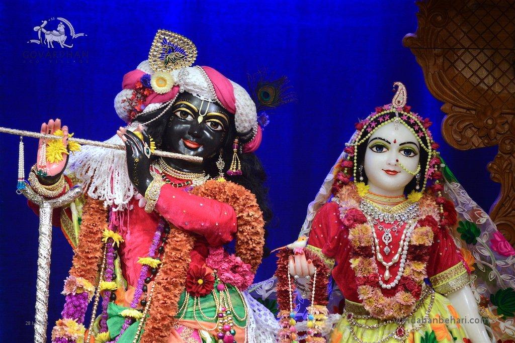 ISKCON GEV (Wada) Deity Darshan 28 Jan 2016 (4)