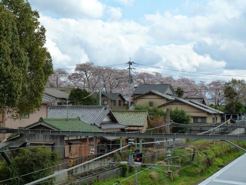 2014 Japan - Dag 8 - mike-P1050773-0308.JPG