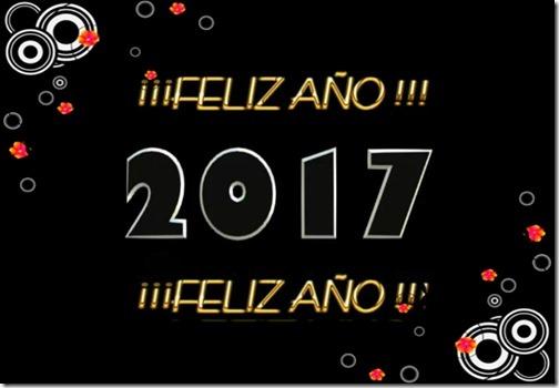 feliz ano nuevo cosasdivertidas (4)