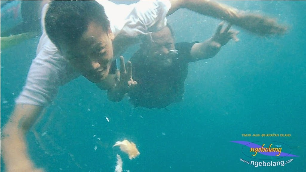 pulau harapan timur jauh 29-30 nov 2014 caklung 07