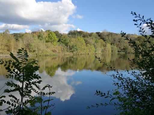 CIMG4447 Ardingly Reservoir