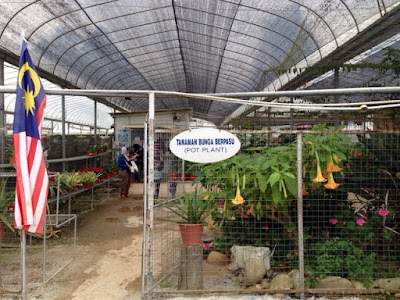Agrotech Park in MARDI Cameron Highland