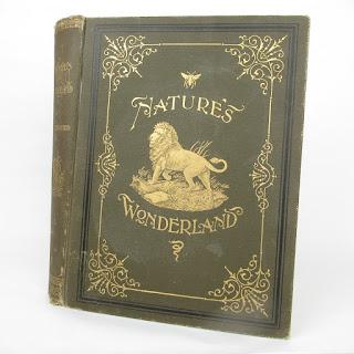 Natures Wonderland By J. Sterling Kingsley Volume 1 Book