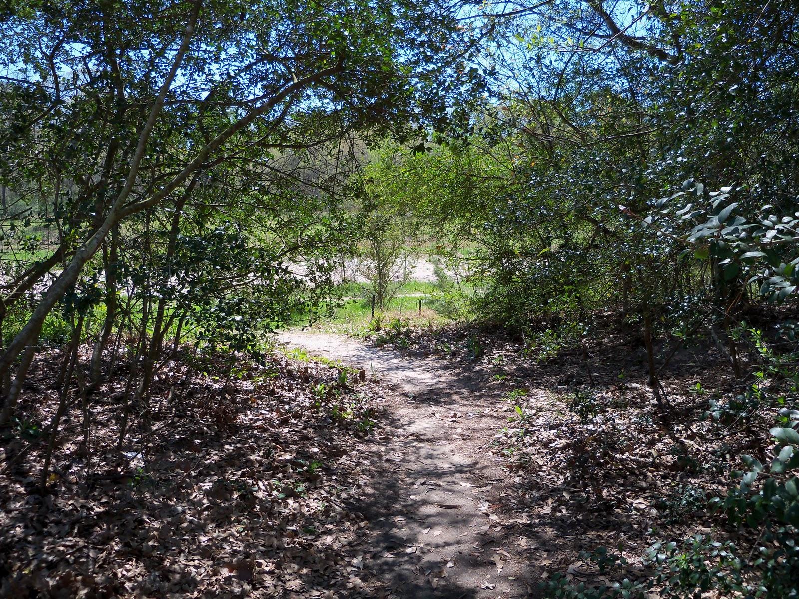 Burroughs Park - 101_0185.JPG