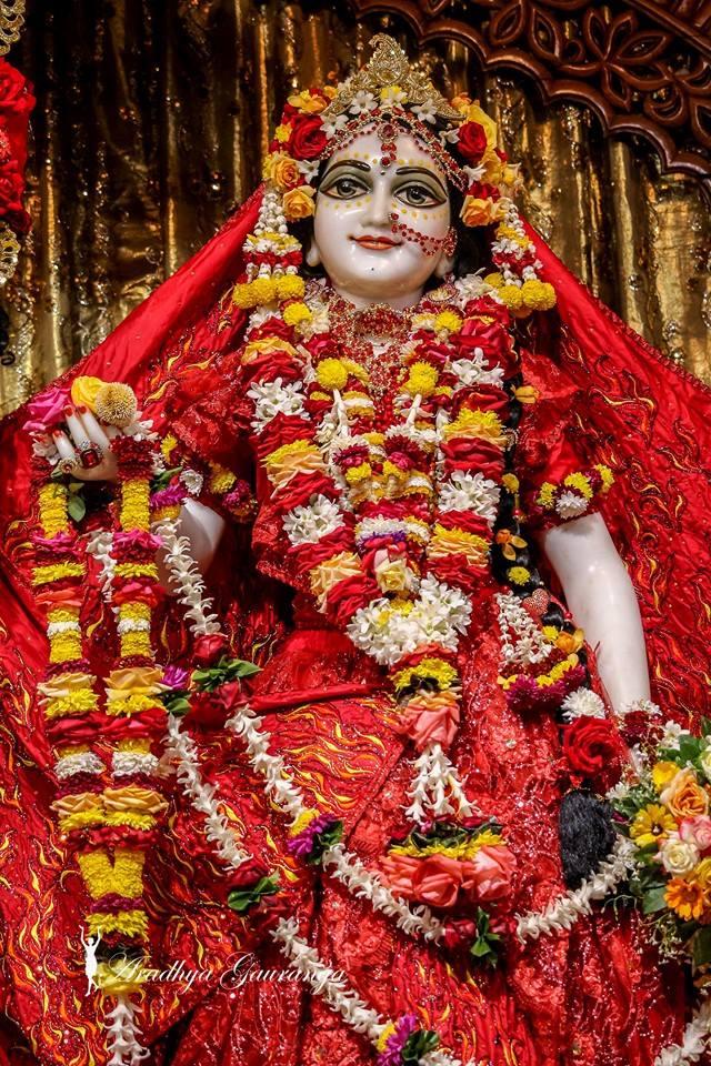 ISKCON Mayapur Deity Darshan 06 Jan 2015 (14)