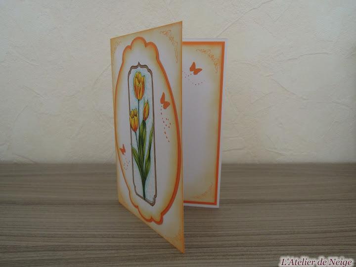 021 - Tulipes