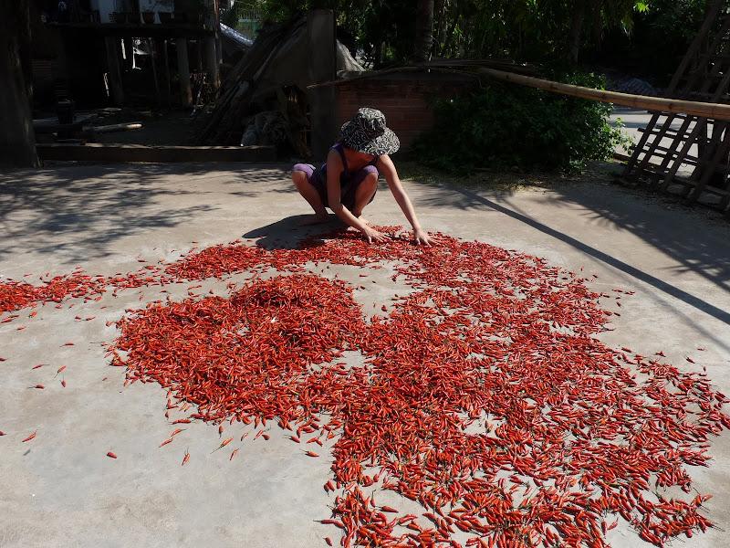 Chine.Yunnan.Damenlong -Galanba-descente Mekong - Picture%2B1584.jpg