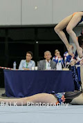 Han Balk Fantastic Gymnastics 2015-9499.jpg