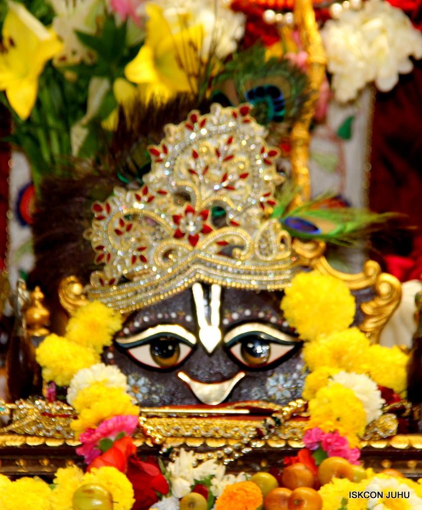 ISKCON Juhu Sringar Deity Darshan on 2nd Jan 2017 (11)