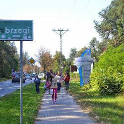 Kajaki, Białobrzegi nad Pilicą, 09.2014