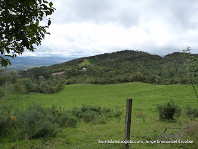 Reserva_Biologica_Encenillo-30.jpg