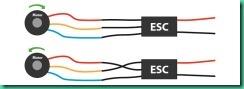 ESC motor