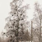 2014.03.15 Suurupi Elamusretk - AS20140315SUURUPI_061S.JPG