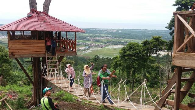 Sumber: pasbana.com, Objek Wisata Sarasah Batang Buluah