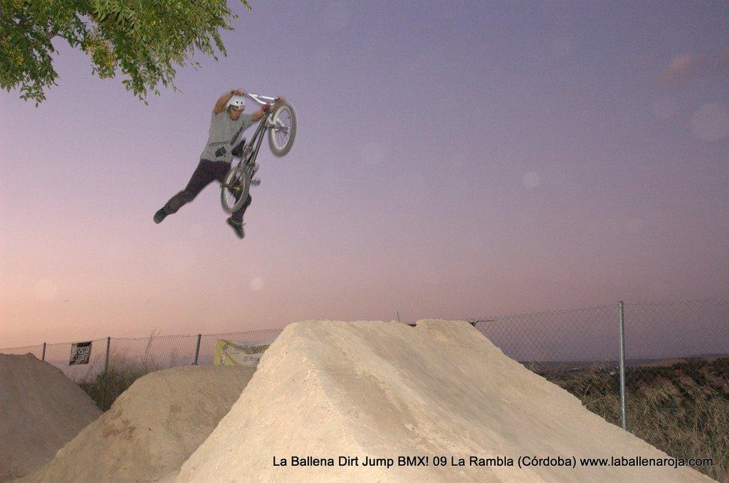 Ballena Dirt Jump BMX 2009 - BMX_09_0169.jpg