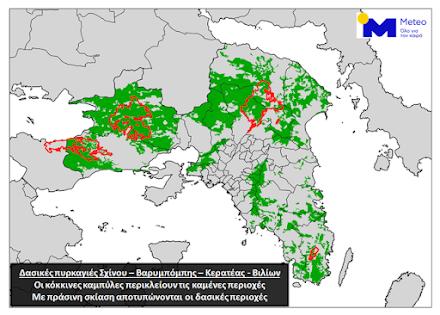 Το 16% των δασών της Αττικής κάηκε φέτος σύμφωνα με το Εθνικό Αστεροσκοπείο Αθηνών