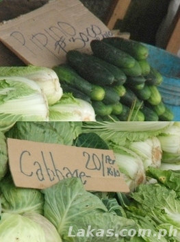 (Top) Pipino P30/kilo; (Bottom) Cabbage P20/kilo
