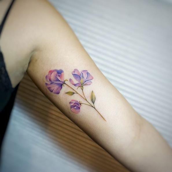 esta_flor_de_ervilha-de-cheiro