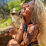 Jessie Kreiss's profile photo
