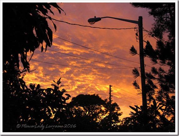 12-30-sunset-5