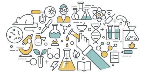 ¿A que se dedican los jovenes investigadores predoctorales?