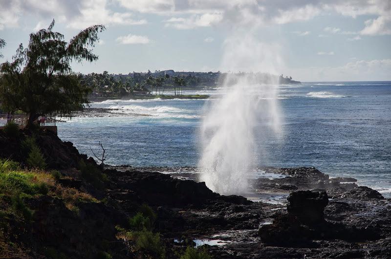 06-27-13 Spouting Horn & Kauai South Shore - IMGP9775.JPG