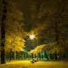 06-01-2013   Sosnowiec   Park Sielecki