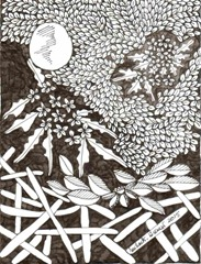 497 Zentangle Night