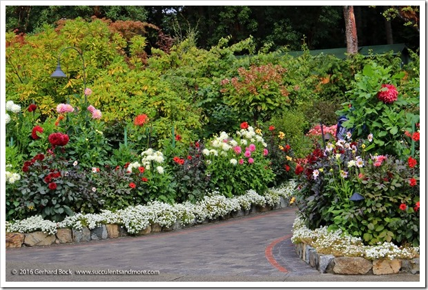 160906_Butchart_Gardens_0105