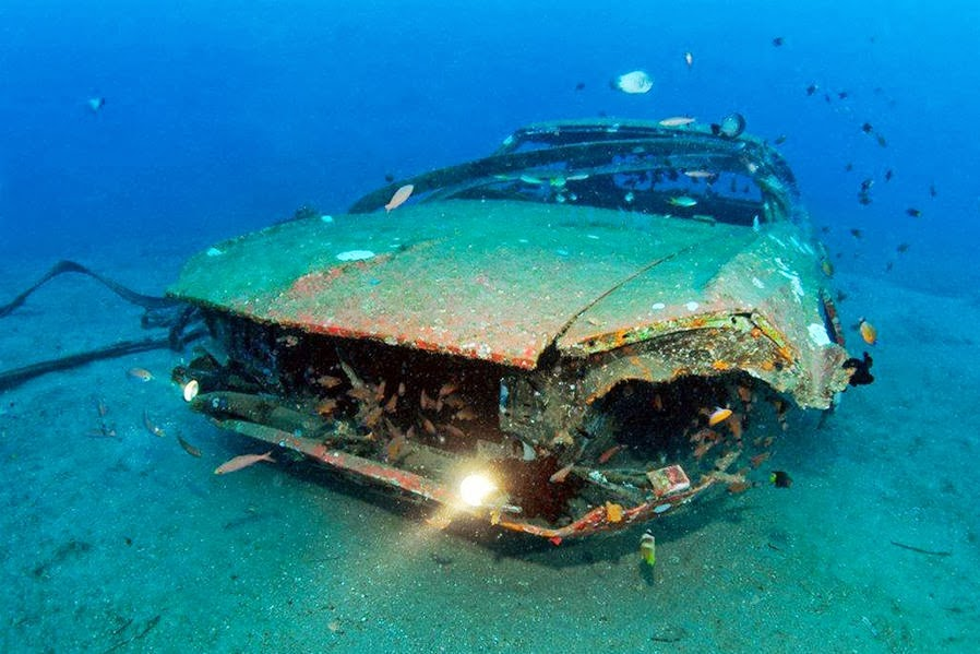 Cars Found Underwater : Add flashlights to the car and mustang looks like a