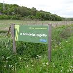 Bois de la Bergerette
