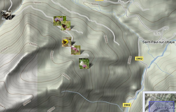 Localisation des photos Forêt de Mélezen et Vallon Claous
