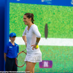 Andrea Petkovic - AEGON Classic 2015 -DSC_6911.jpg