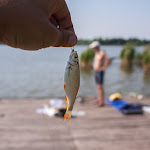 20150725_Fishing_Bochanytsia_056.jpg