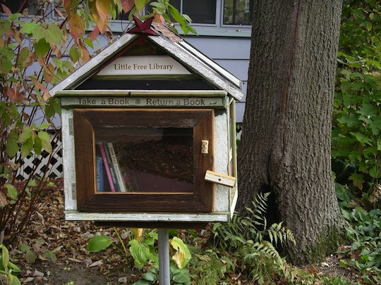 tiny little neighborhood library
