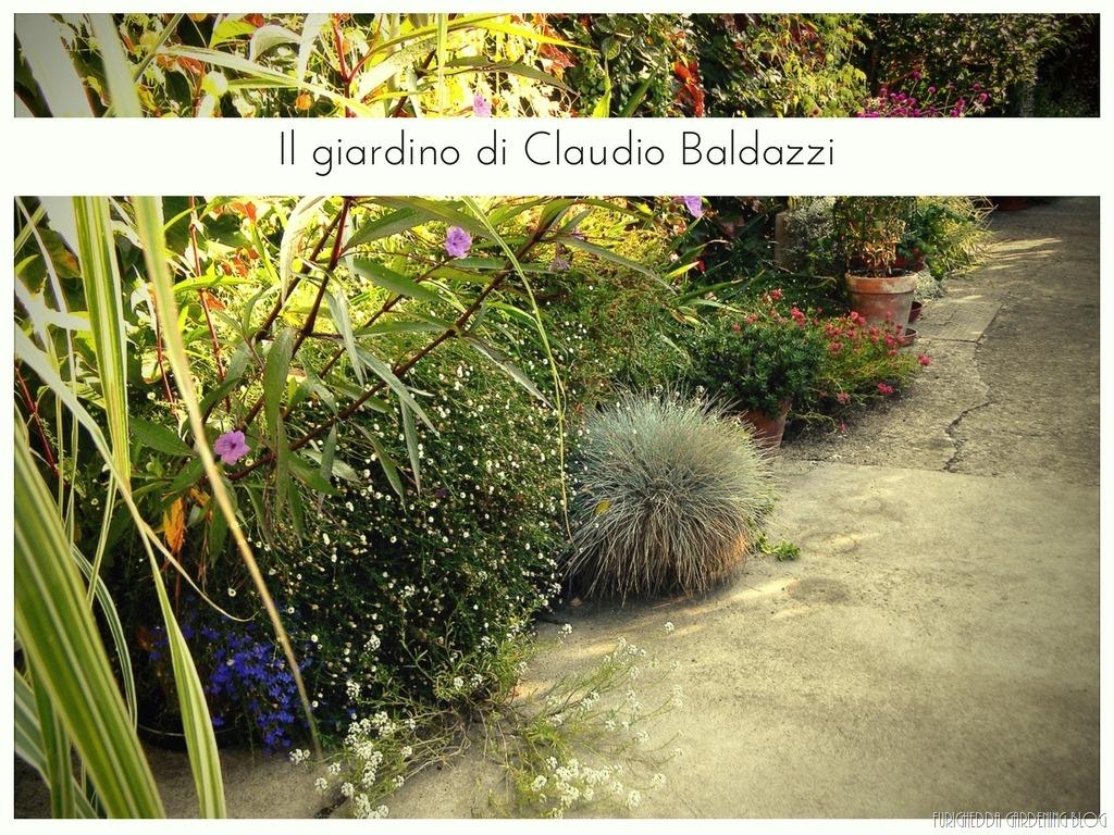 [Il+giardino+di+Claudio+%2825%29%5B3%5D]