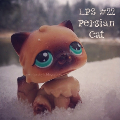 Littlest pet shop number 22
