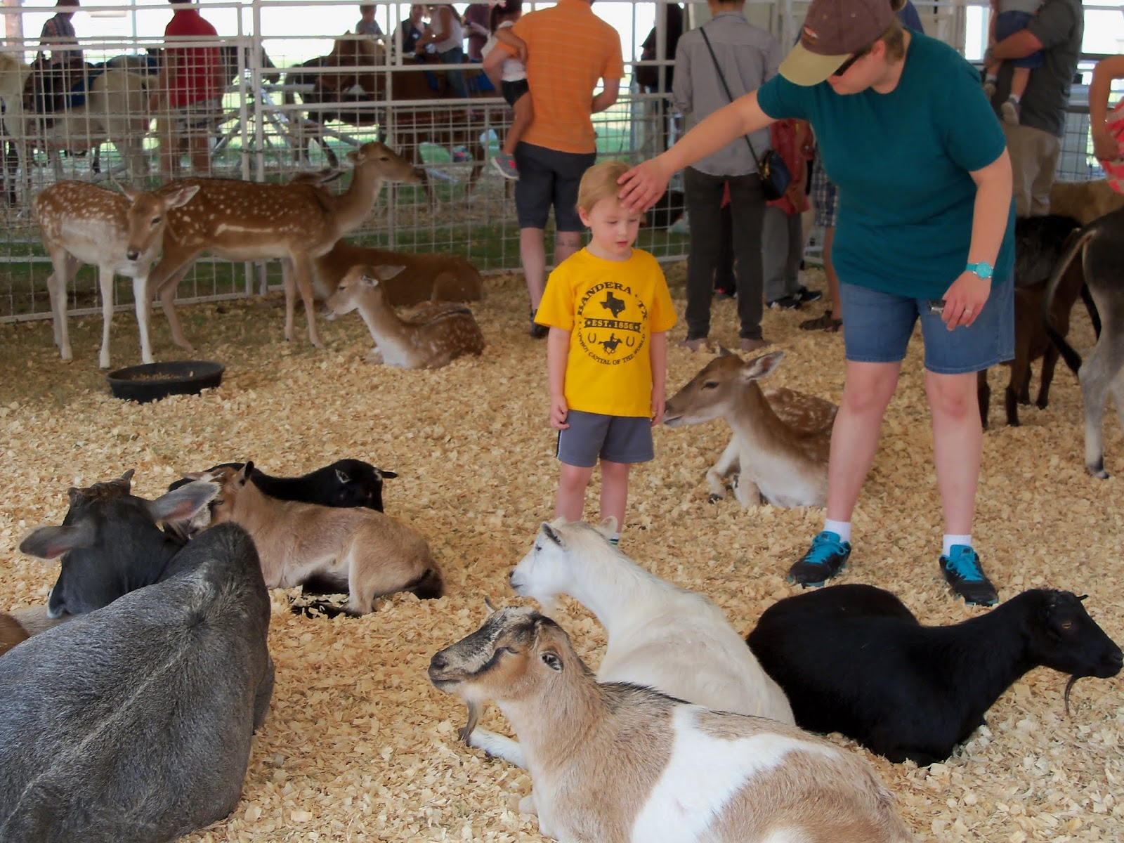 Fort Bend County Fair 2015 - 100_0178.JPG