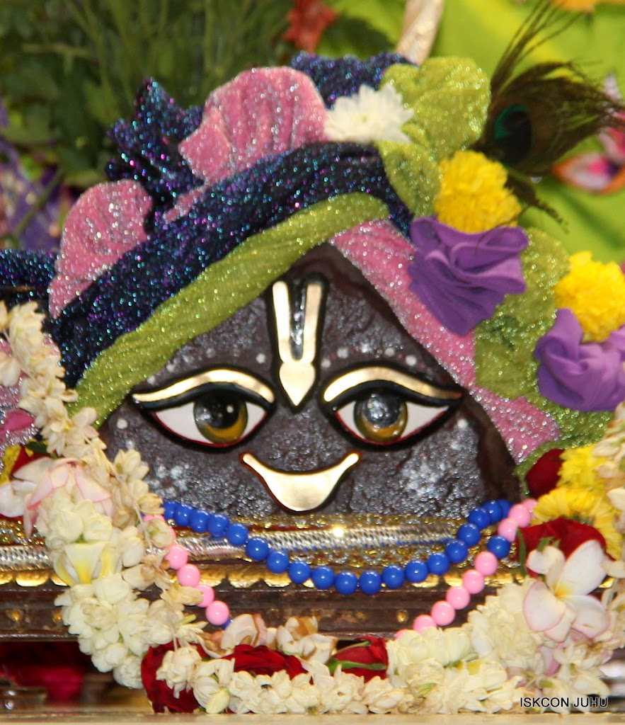 ISKCON Juhu Sringar Deity Darshan on 30th June 2016 (10)