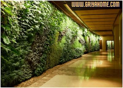 Gambar Taman Vertical Garden